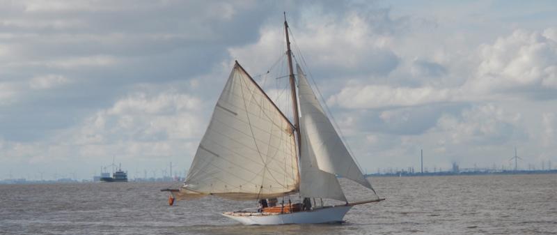 Ein altes Holzboot mit Gaffelrigg segelt auf der Elbe.